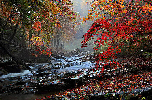 Fall Flavor by Donnie Smith