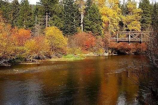 Fall Reflections by Wanda Jesfield