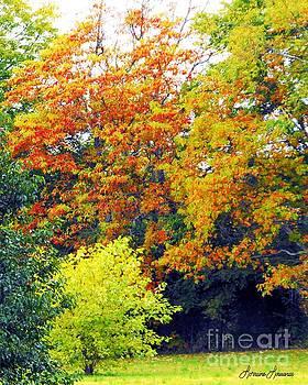 Fall Showing by Lorraine Louwerse