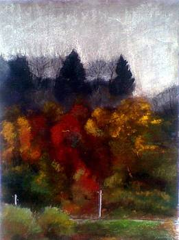 Fall2 by Vaidos Mihai