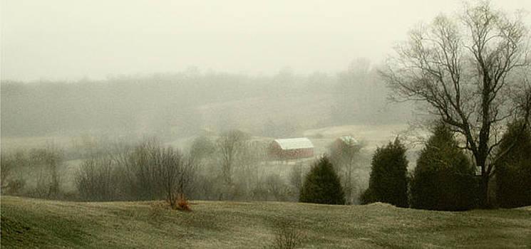 Farm Lands by Marilyn Marchant
