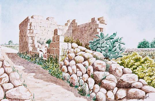 Farmhouse Ruins. 76 by Louis Mifsud