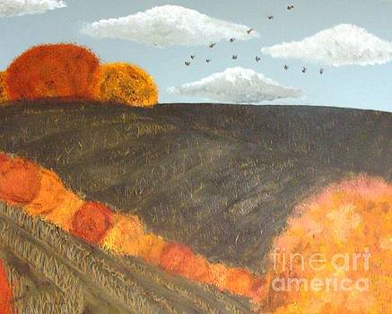 Fields and Birds by Erin Mikels