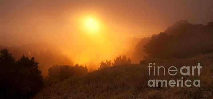 Fire on the Hillside by Matt Tilghman