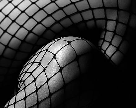 Fishnet by Michael Carroll