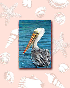 Florida Pelican with seashell border by Peggy Dreher