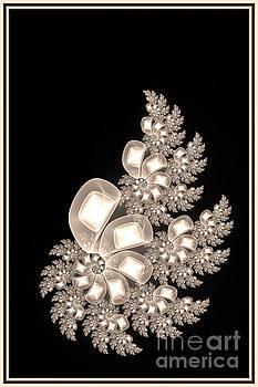 Flower of snails by Julie Nikonorova