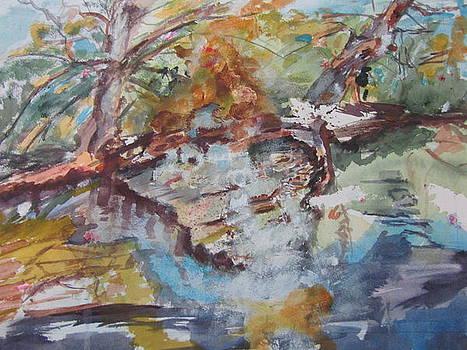 Forgotten Stream by Barbara Pearston