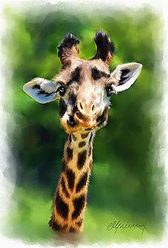 Funny Giraffe by Michael Greenaway