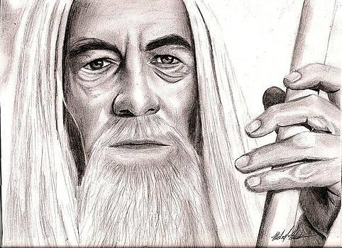Gandalf by Michael Mestas