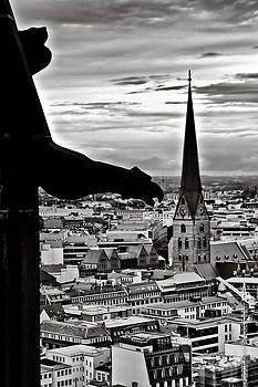 Gargoyle over Hamburg by Edward Myers