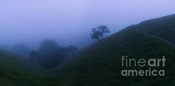 Ghostly Twilight Fog by Matt Tilghman