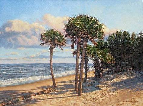 GICLEE Barrier Island Palms by Michael Story