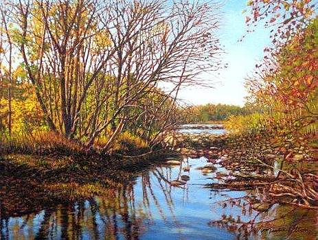 GICLEE October Hues Saluda River by Michael Story