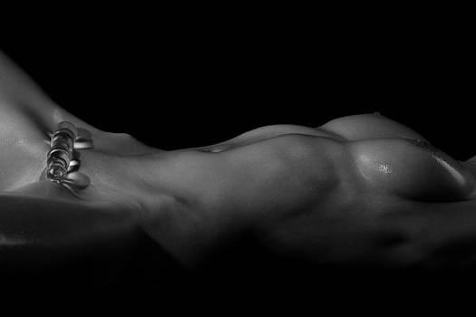 Glass Bodyscape by Stuart Thomson