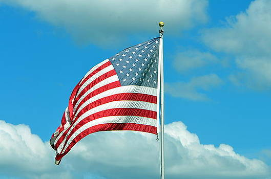 God Bless Our America by Tanya Tanski
