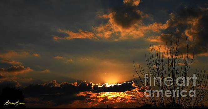 God's Work by Lorraine Louwerse