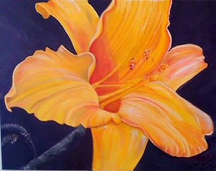 Golden Bliss by Melanie Wadman