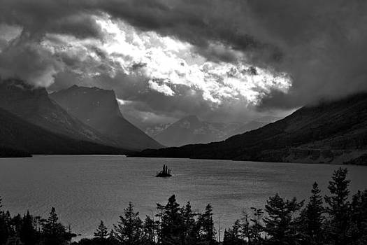 Goose Island by Larry Darnell