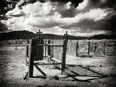 Graves by Walt Jackson