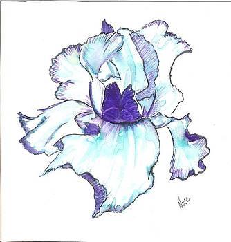 Greg's Iris by Nancy Nuce