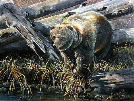Grizzly Pond by Scott Thompson