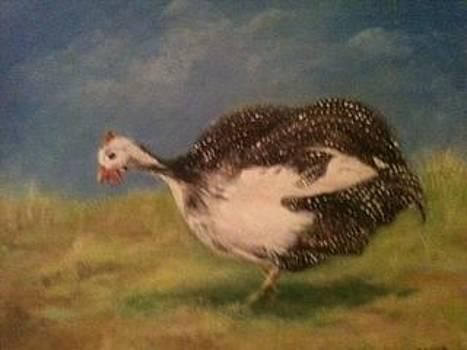 Guinea Fowl by Joseph Baker