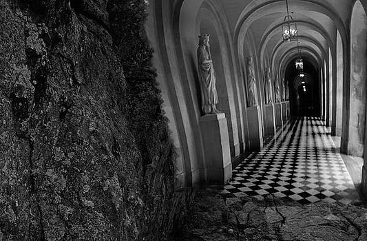 Hallway of Dreams by Olivia Hunter