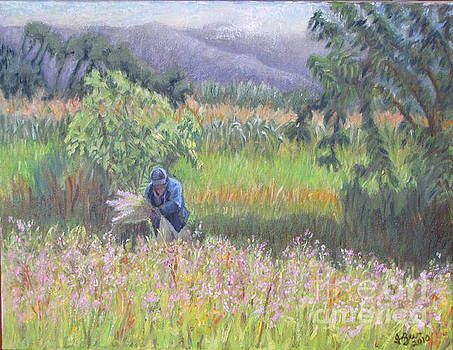 Harvesting flowers in Etla by Judith Zur
