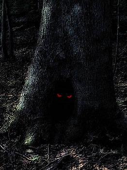 Haunted Tree by Walt Stoneburner