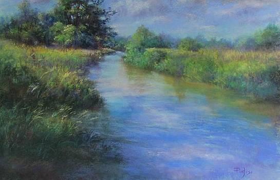 Hidden Waters by Bill Puglisi
