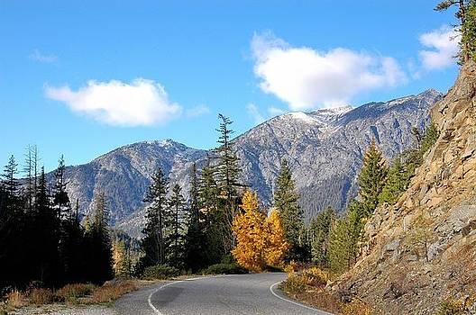 Highway to Higher Ground by Wanda Jesfield