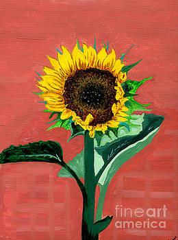Homegrown Sunshine..My Sunflower by Anne Gitto