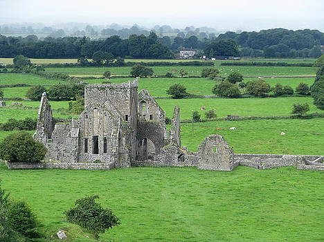 Hore Abbey by Sheila Rodgers