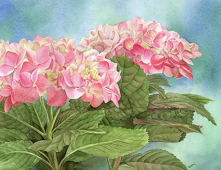 Hydrangea by Leona Jones