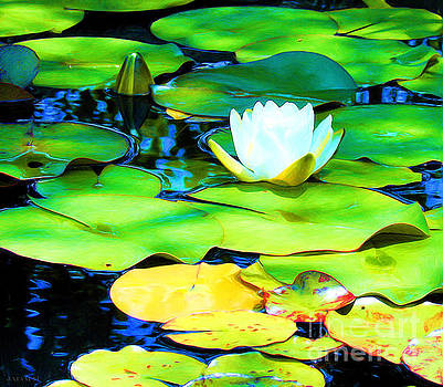 Impressions of A White Water Lily by J Jaiam