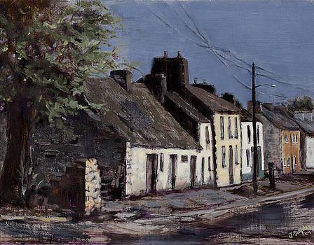 Irish Cottages by Joyce Snyder