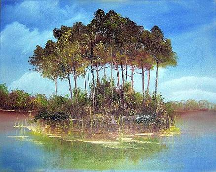 Island in the River by Nancy Nuce