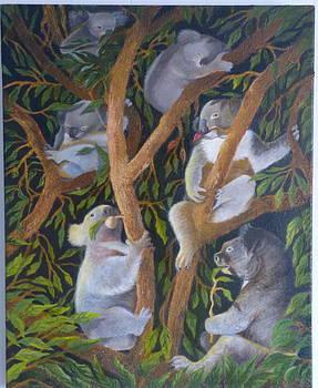 It's a Koala's World by Lila Strong