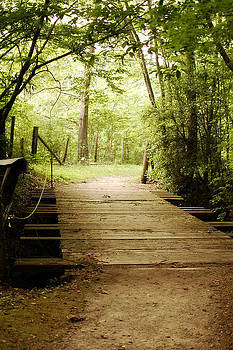 It's Your Path by Jessica Wilson