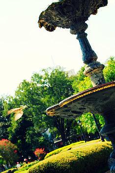 Jackson Square Fountain by Jennifer Kelly