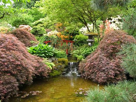 Japanese Theme Garden by Lynn Price