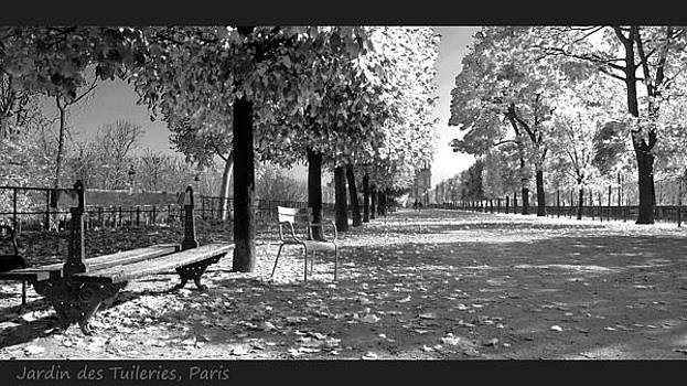 Jardin des Tuileries Paris by Bakhtiar Umataliev