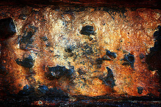 Just Rust by Shane Rees