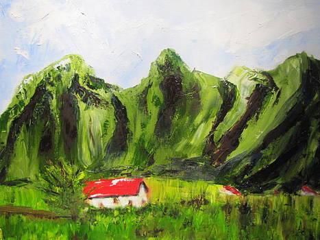 Kaui Hawaii by Jenell Richards