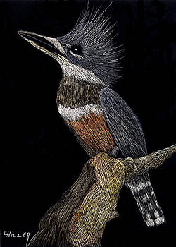 Kingfisher by Linda Hiller