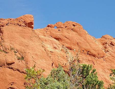 Kissing Camels by Donna Parlow