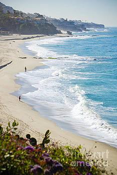 Laguna Beach by Kristine Andrews
