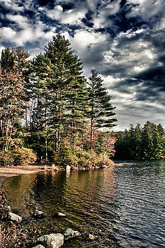 Lakeshore in NH by Edward Myers