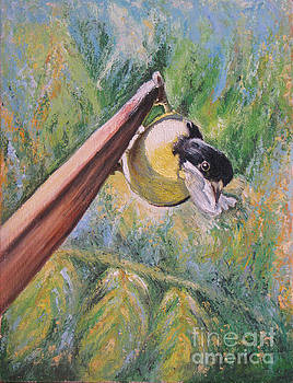 Lesser Lunching by Judith Zur